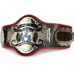FIGHTING SPORTS TOP OF THE WORLD CHAMPIONSHIP BELT