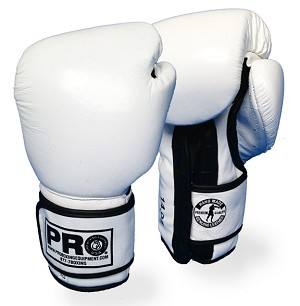 PROTEK Training Gloves Leather